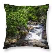 Highway Rapids Throw Pillow