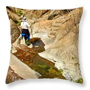 Hiker On Window Trail In Chisos Basin In Big Bend National Park-texas   Throw Pillow