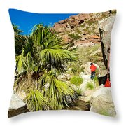 Hikers At Oasis On Borrego Palm Canyon Trail In Anza-borrego Desert Sp-ca  Throw Pillow
