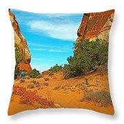 Hiking Between Massive Needles In Needles District Of Canyonlands National Park-utah Throw Pillow