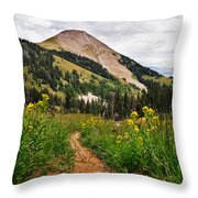 Hiking In La Sal Throw Pillow