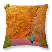 Hiking On Capitol Gorge Pioneer Trail In Capitol Reef National Park-utah Throw Pillow
