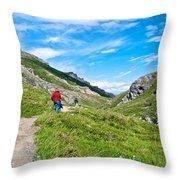 Hiking On Savage River Trail In Denali Np-ak    Throw Pillow
