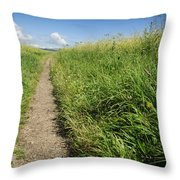 Hiking Path In Devon England Throw Pillow
