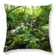 Hiking The Falls Throw Pillow