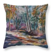 Hiking To A Vision Throw Pillow