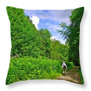 Hiking Trail Along Rivier Du Nord In The Laurentians North Of Montreal-qc Throw Pillow