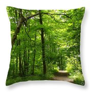 Hiking Trails To Mont Morency Falls Throw Pillow