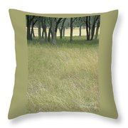 Hill Country Calm Throw Pillow