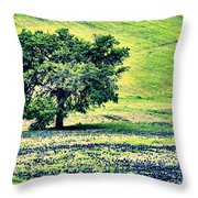 Hill Country Scenic Hdr Throw Pillow