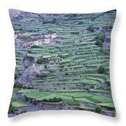 Hill Modified For Agriculture, Tetang Throw Pillow