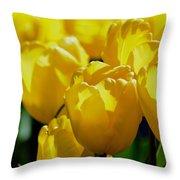 Hill Of Golden Tulips Throw Pillow