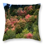 Hill Side Colors Throw Pillow