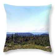 Hill View - Summer - Berry Picking Barrens Throw Pillow