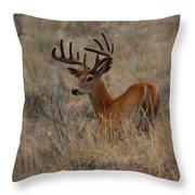 Hillside Giant Throw Pillow