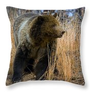 Hillside Grizzly Throw Pillow