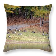 Hillside Of Canadian Geese Throw Pillow