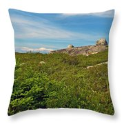 Hillside View Of Swissair Flight 111 Memorial In Whalesback-ns Throw Pillow