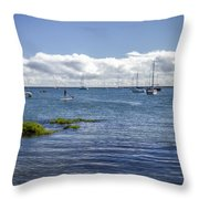 Hilo Bay Throw Pillow
