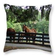 Hilton Head Island Beauty Throw Pillow