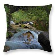 Himalayan Nectar... Throw Pillow