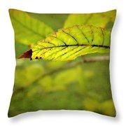 Hint Of Autumn Throw Pillow