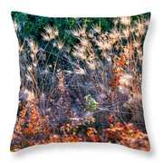 Hint Of Fall Colors 15813 Throw Pillow