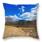Hint Of Spring Green Throw Pillow