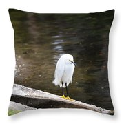 Hippie Bird Throw Pillow