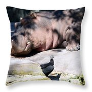 Hippo And Friend Throw Pillow