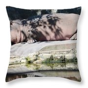 Hippo At Leisure Throw Pillow
