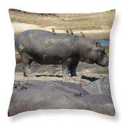 Hippo - Family Throw Pillow