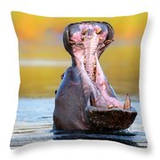 Hippopotamus Displaying Aggressive Behavior Throw Pillow by Johan Swanepoel