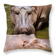 Hippopotamus In Water Throw Pillow