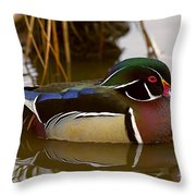 His Majesty Wood Duck Throw Pillow