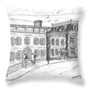 Historic Catskill Street Throw Pillow