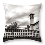 Historic Grundy Mills Throw Pillow