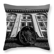 Historic Krest Throw Pillow