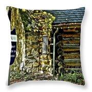 Historical Landmark Throw Pillow
