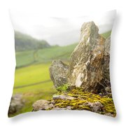 History And Nature. Wicklow. Ireland Throw Pillow