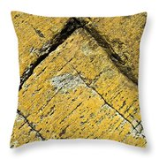 History Of Earth 3 Throw Pillow by Heiko Koehrer-Wagner