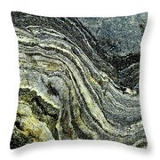 History Of Earth 9 Throw Pillow