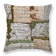 History Of Hill Ward Asylum Throw Pillow