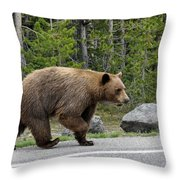 Hmmm .... What's On The Other Side Of The Road Today? Throw Pillow
