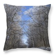 Hoar Frost On Campground Road Throw Pillow
