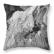 Hoar Frost On Pine Branches Throw Pillow