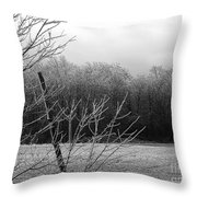 Hoar Frost On The Wood Throw Pillow