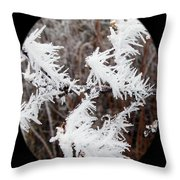 Hoarfrost 15  Throw Pillow