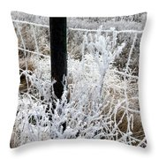 Hoarfrost 16  Throw Pillow