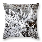 Hoarfrost 18  Throw Pillow